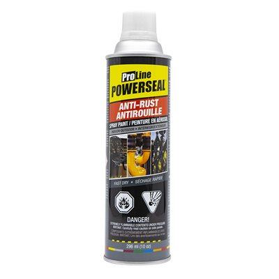 Anti-Rust Paint Spray Flat White 285g (10oz)