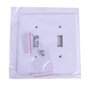 2 Gang Toggle switch plate White